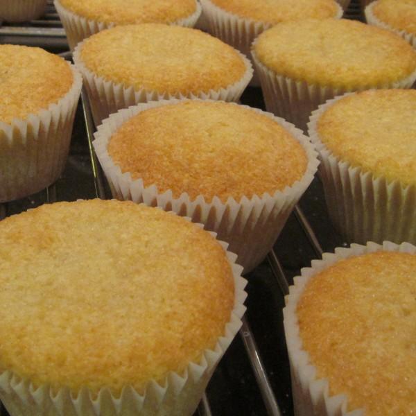 plain vanilla sponge cupcakes neo cakes