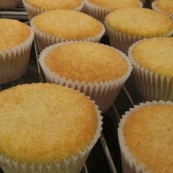 Plain Vanilla Sponge Cupcakes